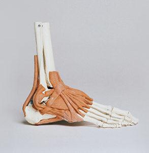 operazione paralisi del piede